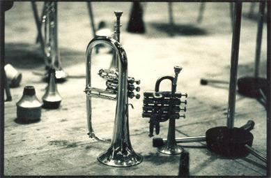 Trompeten Makro
